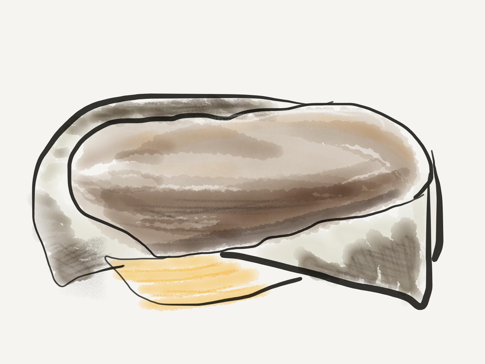 Le pain complet (janvier 2019)